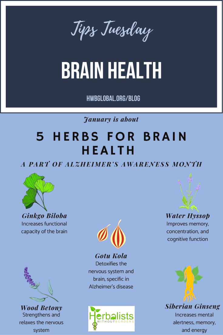 Pinterest Brain Health