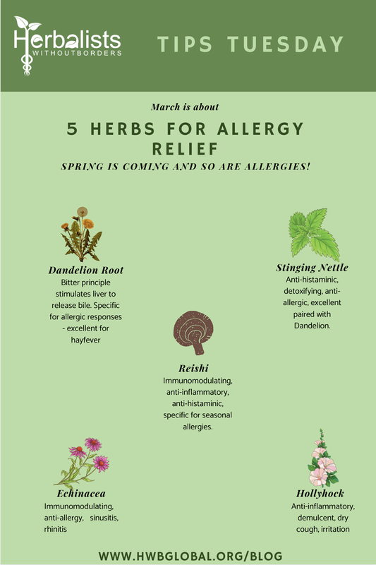 pinterest allergies